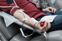 Донорство как бесплатная проверка здоровья